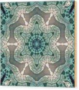 Jyoti Ahau 998 Wood Print