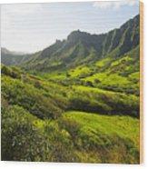Kaaawa Valley And Kualoa Ranch Wood Print by Dana Edmunds - Printscapes