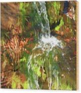 Waterfall Of Love Wood Print