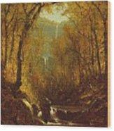 Kaaterskill Falls Wood Print