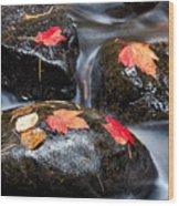 Kadunce River Wood Print