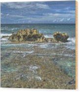 Kaena Point  7898 Wood Print