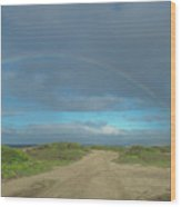 Ka'ena Point Rainbow Wood Print