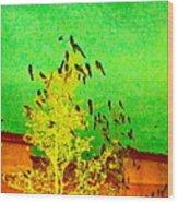Kafka Summons His Birds To The Castle Wood Print
