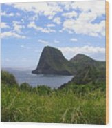 Kahakuloa Point- Island Dreaming II Wood Print