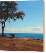 Kahe Point Beach Park Wood Print