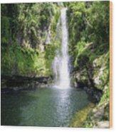 Kaiate Falls Wood Print