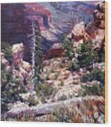 Kaibab Trail Wood Print