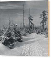 Kaiserweg, Harz Wood Print