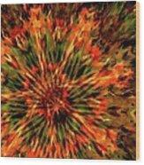 Kaleidoscope 1 Wood Print
