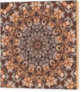 Kaleidoscope 121 Wood Print