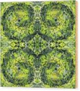 Kaleidoscope Mandalas #1112 Wood Print