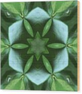 Kaleidoscope My Garden 3 Wood Print