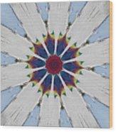 Kaleidoscopic 5 Wood Print