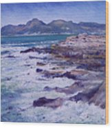Kalk Bay And Fish Hoek  Cape Town South Africa 2006  Wood Print
