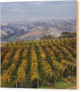 Kalthoff Common Vineyard Wood Print