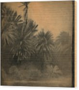 Kanaha Wood Print