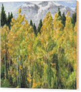 Kananaskis Autumn Morn Wood Print