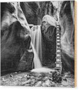 Kanarraville Falls Bw Wood Print