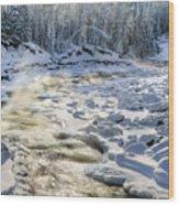 Kanasi Winter Wood Print