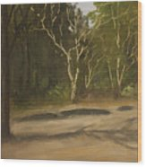 Kanha Forest Trail Wood Print