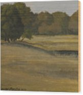Kanha Meadows Wood Print