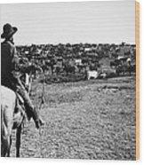 Kansas: Cattle, C1900 Wood Print