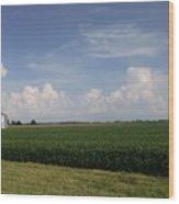 Kansas Skies Wood Print