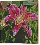 Karen's Lily Wood Print