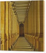Karlovy Vary Colonnade Wood Print by Juergen Weiss