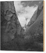 Kasha-katuwe Tent Rocks National Monument 9 Wood Print