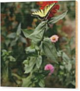 Kathy's Butterfly Wood Print