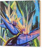 Kauai Bird Of Paradise Wood Print