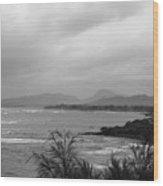 Kauai Coconut Coast Wood Print