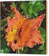 Kauai Hibiscus Wood Print