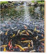 Kauai Koi Pond Wood Print by Darcy Michaelchuk
