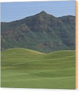 Kauai Marriott Golf Cours Wood Print