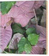Kauai  Pinks Wood Print