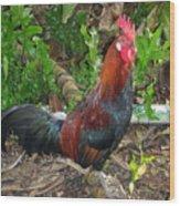 Kauai Rooster Wood Print