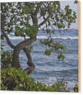Kauai Shores Wood Print