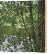 Kaulanen Lake Wood Print