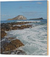 Kaupo Beach Wood Print
