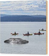 Kayakers Paddle To Fishing Cone On Yellowstone Lake Wood Print
