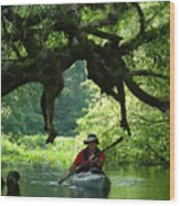 Kayaking In Dismal Swamp Wood Print