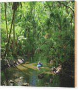Kayaking In Tropical Paradise Wood Print