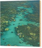 Kayaking Through Beautiful Coral Wood Print