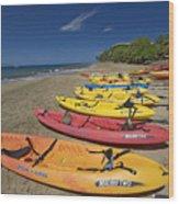 Kayas On Beach Wood Print