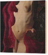 Kazj0953 Wood Print