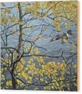 Kb Bateman Aspen And Kingfisher Robert Bateman Wood Print