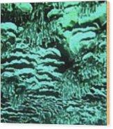 Kealakekua Plate Coral Wood Print